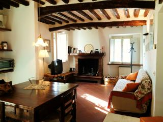 Lovely House with Central Heating and DVD Player - Camaiore vacation rentals