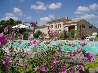 Spacious 4 bedroom Gite in Pons - Pons vacation rentals