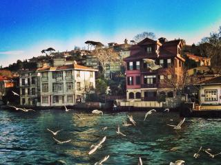 Romantic&Cute flat on Bosphorus - Istanbul vacation rentals