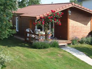 Bright 2 bedroom Plombieres les Bains Chalet with Internet Access - Plombieres les Bains vacation rentals