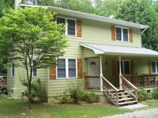 The Cottage @ Hemlock Grove  plus Bunkhouse - Loudon vacation rentals