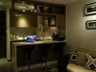 NEW!! 2 BED 2 BATH in Las Condes / Parking / WIFI / AC - Santiago vacation rentals