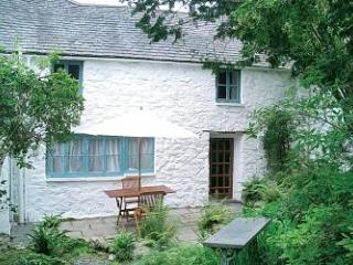The Farmhouse - Dolgellau vacation rentals