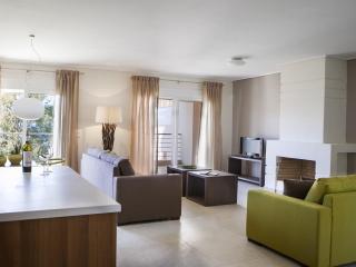 Eucalyptus Apartments - Hibiscus - Cephalonia vacation rentals