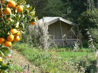 Safaritent,  Terradomilho, Monchique, Algarve - Monchique vacation rentals