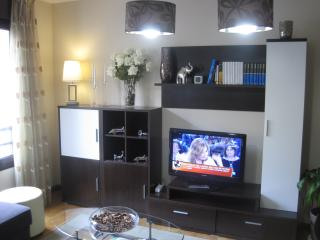Nice 1 bedroom Gijón Apartment with Satellite Or Cable TV - Gijón vacation rentals