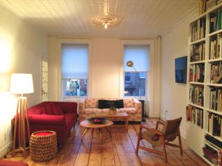 Charming Large 3+  Bedroom Historic Brooklyn Brownstone Duplex - Brooklyn vacation rentals
