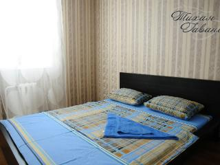 Nice 2 bedroom Condo in Syktyvkar - Syktyvkar vacation rentals