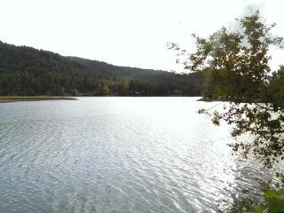 Beautiful Priest River Retreat - Priest River vacation rentals