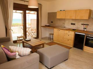 1 bedroom Condo with Internet Access in Kissamos - Kissamos vacation rentals
