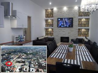 Apartment city center for up to 17 people - Poland vacation rentals