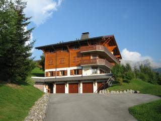 Gorgeous, pet-friendly, piste-side apartment - Villars-sur-Ollon vacation rentals