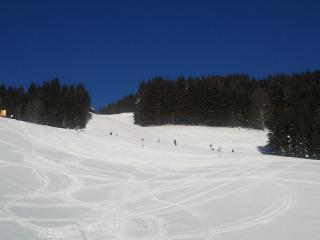 Nice Ski chalet with Internet Access and Television - Filzmoos vacation rentals