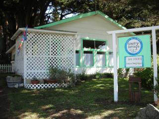 Pet Friendly River View Cottage - Gold Beach vacation rentals
