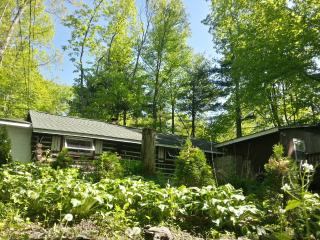 Painted Fern- Classic Log Cabin w modern amenities - Matamoras vacation rentals