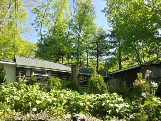 Painted Fern- Classic Log Cabin w modern amenities - Poconos vacation rentals