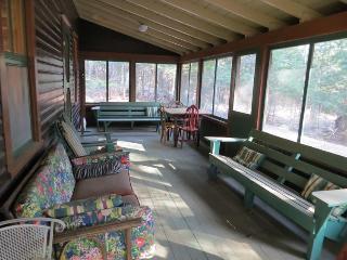 Go Rustic! The Annex at Catamount Loj - Pottersville vacation rentals