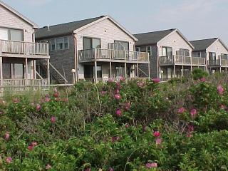 Cape Cod Provincetown  Massachusetts Beach Condo - Provincetown vacation rentals