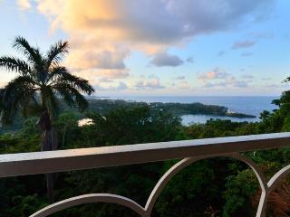 The Fan Villa - Port Antonio vacation rentals