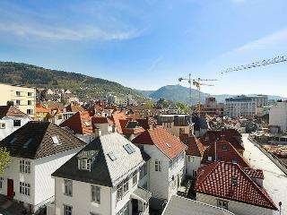 Great view central in Bergen - Hordaland vacation rentals