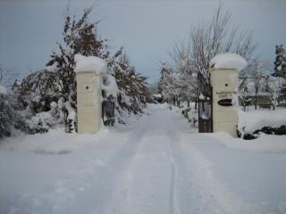 2 Bedroom Luxury Cottage, Private Setting Methven - Methven vacation rentals