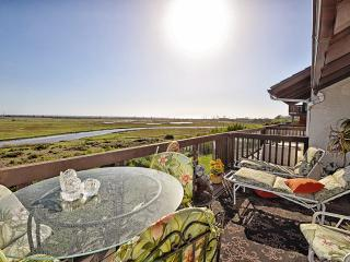 Excellence in Encinitas - Incredible views w/ pool - Pacific Beach vacation rentals