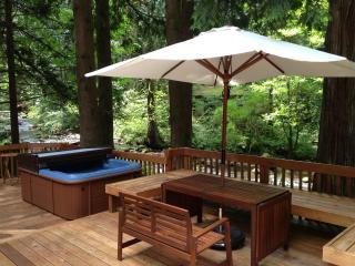 Peaceful creekside retreat - Rhododendron vacation rentals
