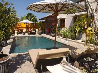 Villa Cinta Ku, Boutique 2 bdrm modern Bali villa. - Kuta vacation rentals