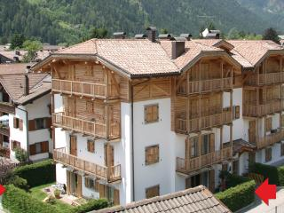 Bright Apartment with private garden - apt n.1 - Pinzolo vacation rentals