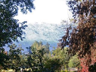 Tranquil 3 bed apt in green suburb of Santiago - Santiago vacation rentals