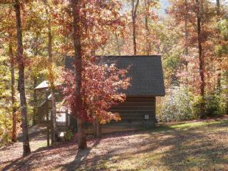 Cabins of Elk Run - Rugby vacation rentals