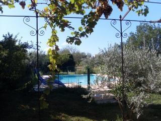 Mas provencal avec piscine dans les vignes - Carpentras vacation rentals