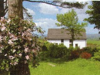 Wonderful Cottage with Deck and Outdoor Dining Area - Bantry vacation rentals
