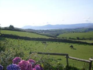 Wonderful Cottage with Deck and Toaster - Bantry vacation rentals