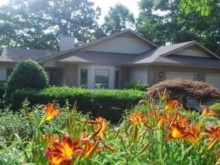 Dock Holiday House - Tellico Plains vacation rentals