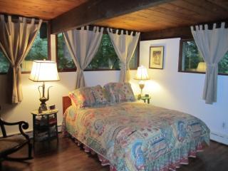 Comfortable 1 bedroom House in Ithaca - Ithaca vacation rentals
