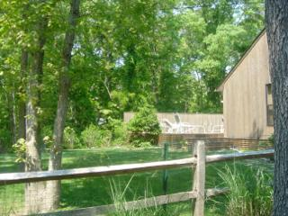 Secluded East Hampton House - East Hampton vacation rentals
