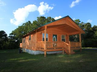 The Hideaway-Secluded luxury cabin with hot tub - Arkansas vacation rentals
