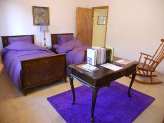 Best location ! 2 room apt. in central jerusalem - Jerusalem vacation rentals