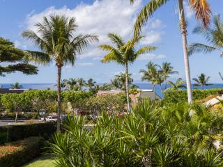 Big ocean view in a Park- Like Setting! - Kihei vacation rentals