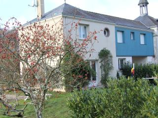 Gîte in the heart of the Loire Valley - Mosnes vacation rentals