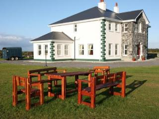 Large house in C.Galway - Kinvara vacation rentals