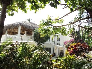 OWNER'S BEACH RESIDENCE - Cabarete vacation rentals