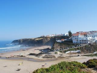 Apt. on the Beach with roof top Zambujeira do Mar - Sao Teotonio vacation rentals