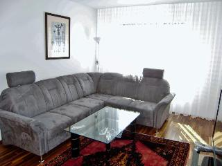 first class apartment in Vienna - Vienna vacation rentals