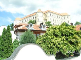 Historical summer house - Breclav vacation rentals