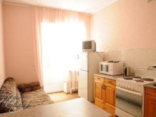 Nice 1 bedroom Condo in Syktyvkar - Syktyvkar vacation rentals