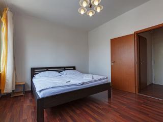 Cherry Apartment near the city center - Prague vacation rentals