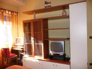 FAO/WFP/IFAD/Univ.Roma 3 lovely furnished miniflat - Rome vacation rentals
