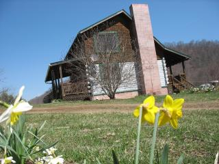 Organic Farm Log Cabin In Mountains - Asheville - Canton vacation rentals